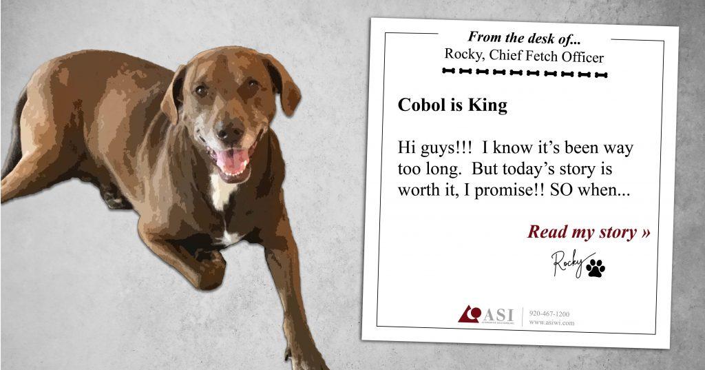 Rocky's Blog: COBOL is King